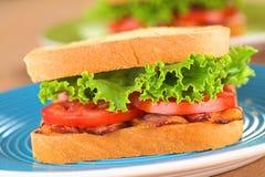 bltsmörgås Royaltyfria Foton