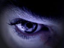 blått öga Arkivbild