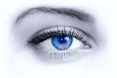 blått öga Royaltyfri Bild