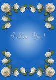 Blått hälsningkort med ramen av vita rosor Royaltyfri Bild