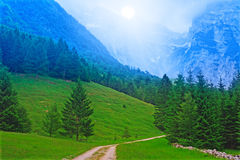 blått skogberg Arkivfoto