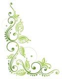 Blätter, Ranke, Frühling Stockbild