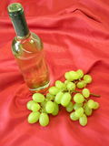 Blttle wine and grape Stock Photography