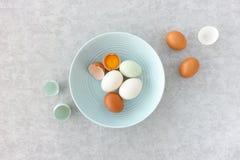 Blu, Brown e Duck Eggs bianco in una ciotola blu Immagine Stock Libera da Diritti