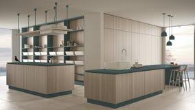 Blu costoso di lusso minimalista e fresa di legno della cucina, dell'isola, del lavandino e del gas, spazio aperto, finestra pano illustrazione vettoriale