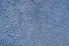 Blu di struttura dell'anemone Immagini Stock