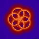 Blu ed arancio cinque F Petaled Fotografia Stock