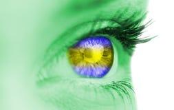 Blu ed occhio di giallo sul fronte verde Fotografia Stock Libera da Diritti