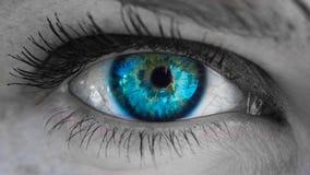 Blu femminile dell'occhio Fotografie Stock