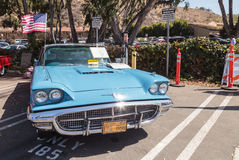 Blu Ford Thunderbird 1963 Immagine Stock