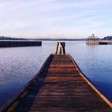 Blu perfetto Fotografie Stock