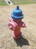 Blu rosso dell'idrante antincendio fotografia stock