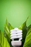 Blub fluorescent compact photographie stock