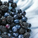 bluberries and blackberries - fresh fruits and healthy eating styled concept stock images
