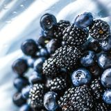 bluberries and blackberries - fresh fruits and healthy eating styled concept stock photography