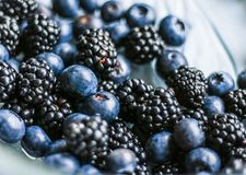 Bluberries and blackberries - fresh fruits and healthy eating styled concept. Elegant visuals stock images