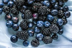 bluberries and blackberries - fresh fruits and healthy eating styled concept royalty free stock images