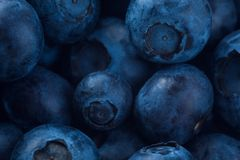 Bluberries Royalty Free Stock Images