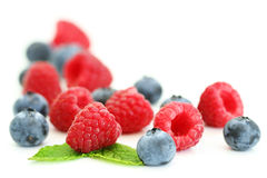 Bluberries and raspberries on white Royalty Free Stock Photo