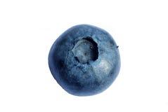 bluberry макрос Стоковое Изображение RF