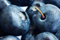 Bluberry macro Royalty Free Stock Photos