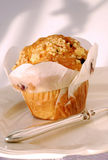 bluberry muffin λευκό Στοκ φωτογραφίες με δικαίωμα ελεύθερης χρήσης