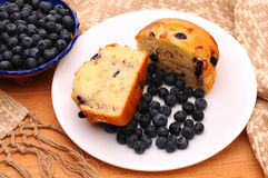 Bluberry Muffin Plate with bowl of berries Stock Images