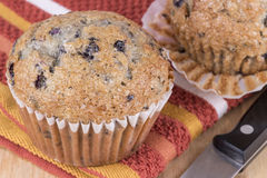 Bluberry muffins Stock Photo