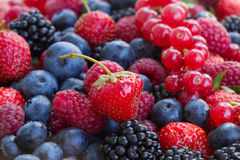 Bluberry, raspberry, blackberry and red currrant. Colorful berries close up Royalty Free Stock Photo