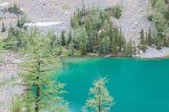 Blue湖艾格尼丝 免版税库存图片