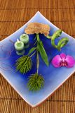 Blue. Pink orchid, dry mushroom, and aromatic candles on bamboo Stock Photos