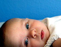 Blue. Beautiful blue-eyed baby with blue wall royalty free stock photos