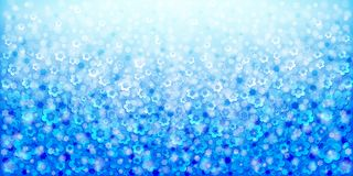 Blue abstract floral background royalty free stock images