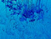 Blue Acrylic Background Stock Image