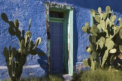 Blue Adobe. A bright blue, worn adobe house in the historic barrio district of Tucson, Arizona is fronted by a pair of large prickly pear cacti Royalty Free Stock Images