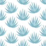 Blue agave  seamless pattern Royalty Free Stock Photography