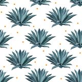 Blue agave vector seamless pattern. Background for tequila packs, superfood with agave syrop, and other. Succulent royalty free illustration