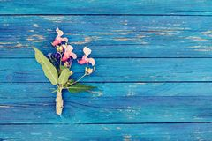 Blue wood texture with small bouquet of Indian balsam flowers. Impatiens glandulifera plant. Natural wooden boards rough backgroun. Blue aged wood texture with stock images