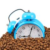 Blue alarm clock buried in beans Stock Photography