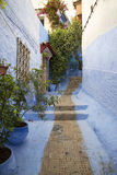 Blue alley. One of the beautiful alley of the Chefchaouen medina in Morocco Royalty Free Stock Photo