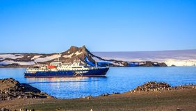 Blue antarctic cruise ship in the lagoon and Gentoo penguins col Stock Images