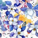 Blue aquilegia flower. Floral botanical flower. Seamless background pattern. vector illustration
