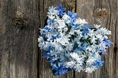 Blue asterisk Stock Photo