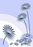 Blue asters background Royalty Free Stock Photo