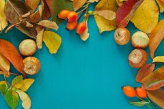 Border from colorful autumn leaves, Berries, nuts on the wooden background. Fall background. Stock Photo