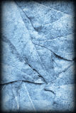 Blue Autumn Foliage Background Vignetted Grunge Texture royalty free stock photography
