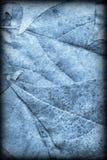 Blue Autumn Foliage Background Vignetted Grunge Texture stock photos