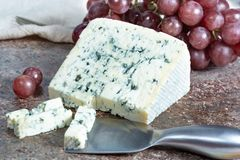 Blue Auvergne semi-hard AOP French blue cheese made from raw cow milk in Auvergne, France served as dessert with grapes. Piece of Blue Auvergne semi-hard AOP stock image