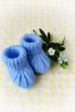 Blue Baby Booties Stock Photography