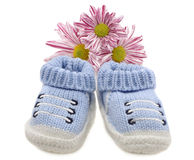 Blue baby shoes with flowers Stock Photo